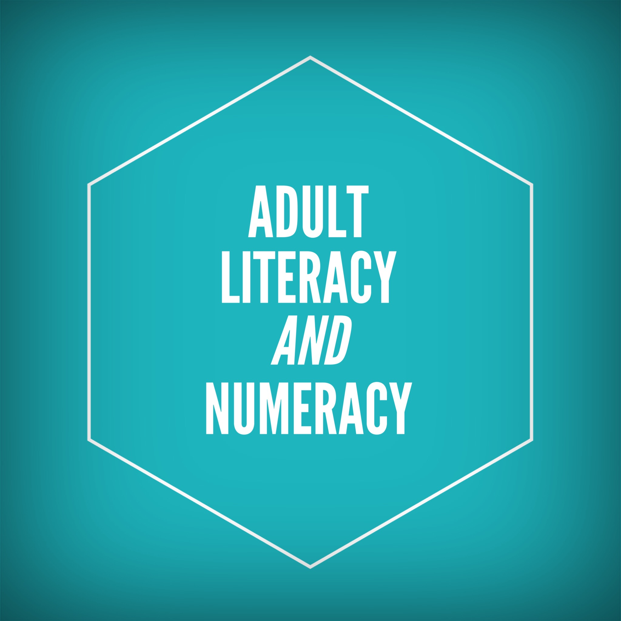 adult numeracy and literacy courses